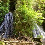 不動滝自然観察園
